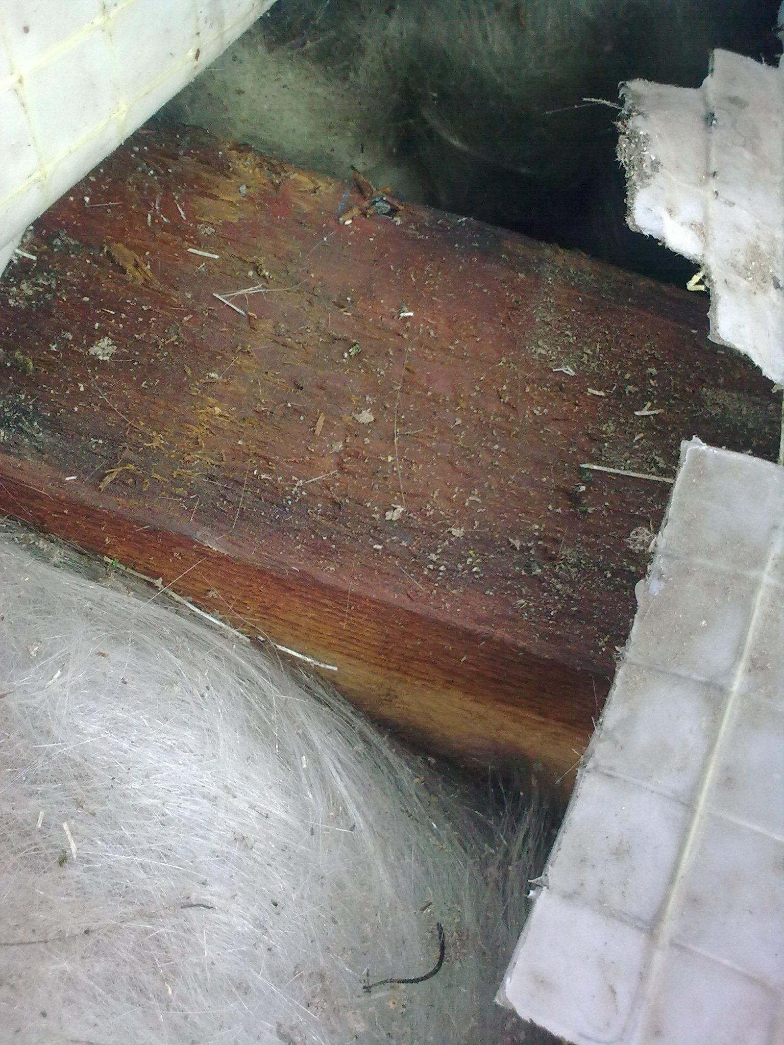 So verottet Holz